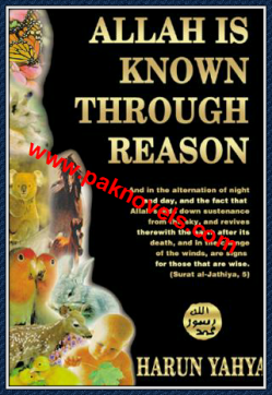 Allah Is Known Through Reason by Haroon Yahya