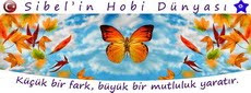 SHD WEB SİTEM