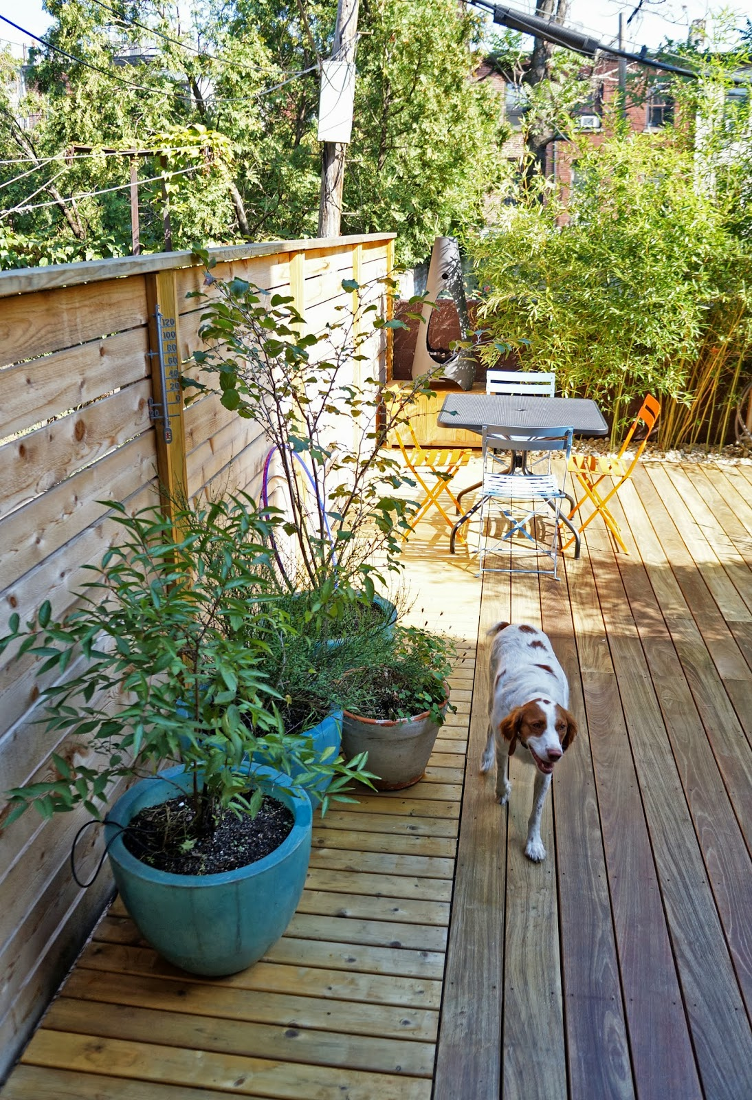 Greenzone landscape design brooklyn backyard becomes a for Garden design brooklyn