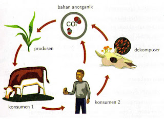 Ekologi dan Ekosistem by Agribisnis Indonesia
