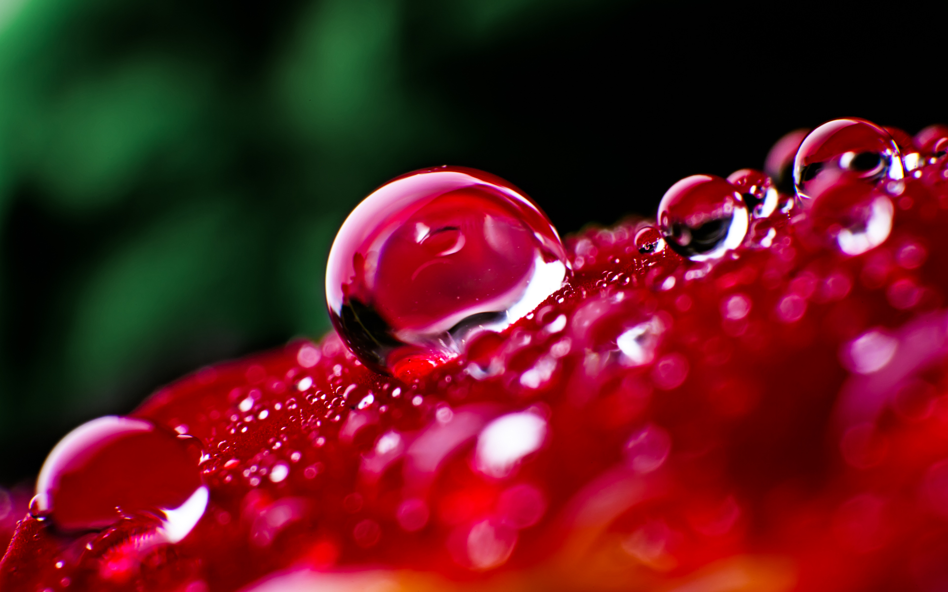 Extraordinary Waterdrops Wallpapers 1920x1200 HD Wallpapers