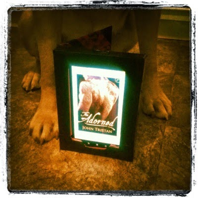 Buster's front paws sit on either side of an e-reader showing the cover art for The Adorned. The cover displays a man's naked back and arms extensively tattooed with patterns that aren't entirely visible in the picture.