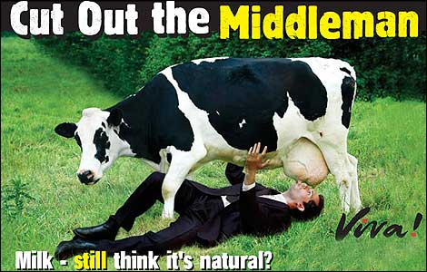 Are Calves Killed To Keep Them From Drinking The Milk