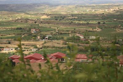 Vineyards in La Rioja Alavesa from Laguardia