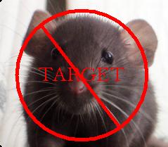 target tikus rumah