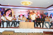 Julayi Double Platinum Disk function Photos-thumbnail-17