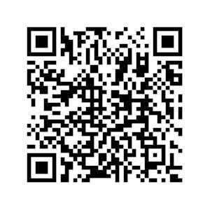 QR del Blog