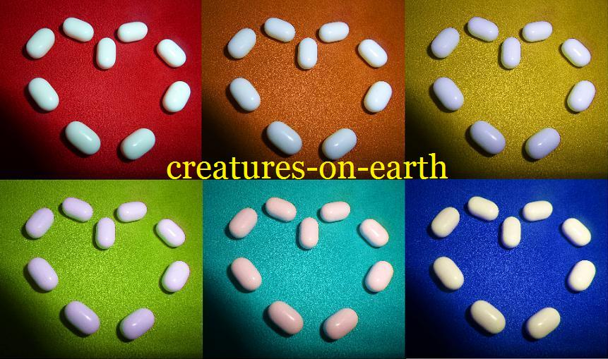 creatures-on-earth