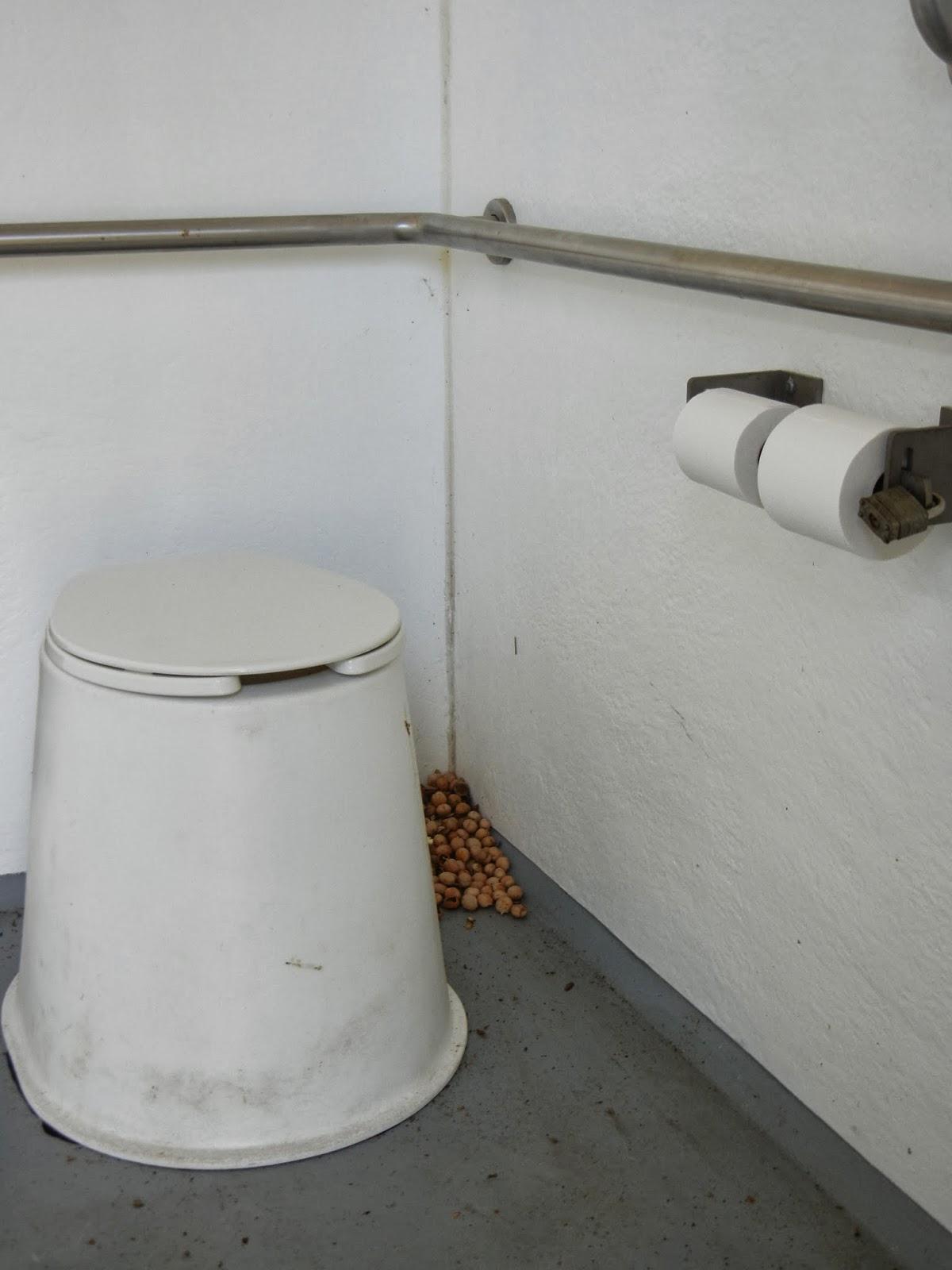 Bathroom Humor hiking with heather: bathroom humor