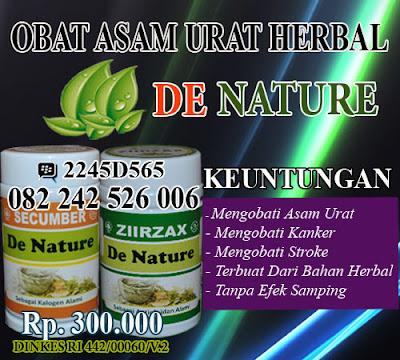obat penghilang asam urat herbal