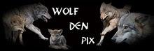 Wolf Den Pix