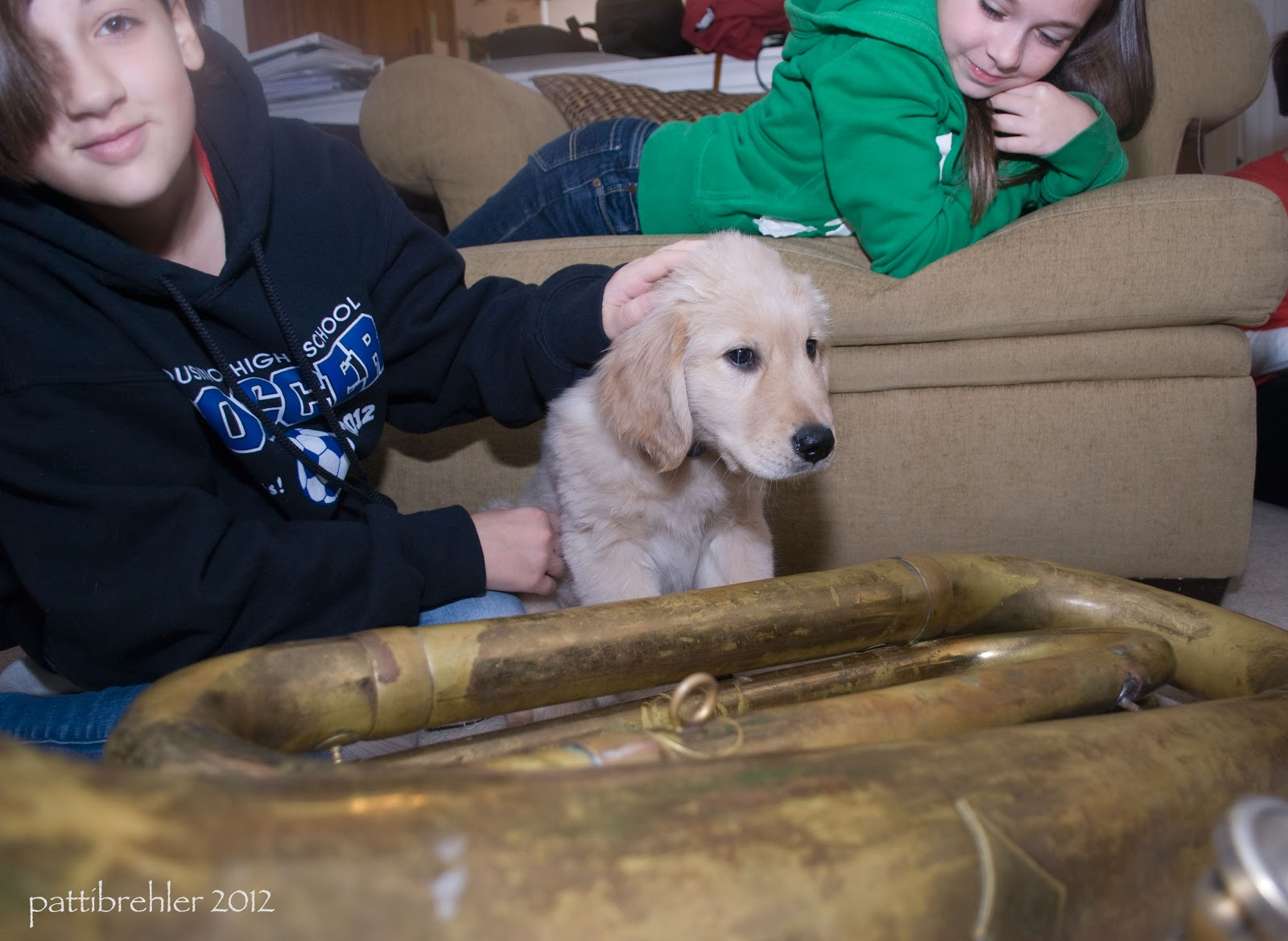 A tuba is on the floor in the foreground. A small golden retriever puppy is sitting behind it. A young girl is sitting on the left side with her left hand on the puppy's head. She has brown hair and is looking at the camera, she is wearing a blue hooded sweatshirt. On a soft tan chair behind the girl and the puppy another girl with long brown hair is laying on her belly on her elbows, she is looking down at the puppy. She is wearing a green hooded sweatshirt and blue jeans.