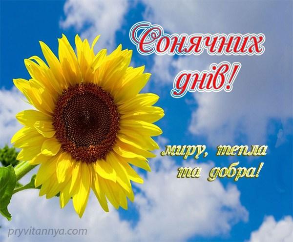 З Україною в серці!