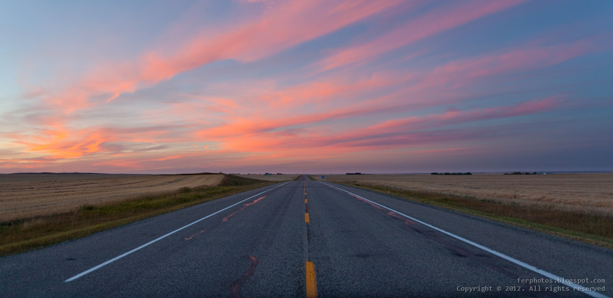 lonely road after sunset Alberta Canada pink magic hour
