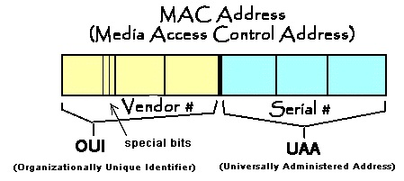 how to find ethernet address on mac