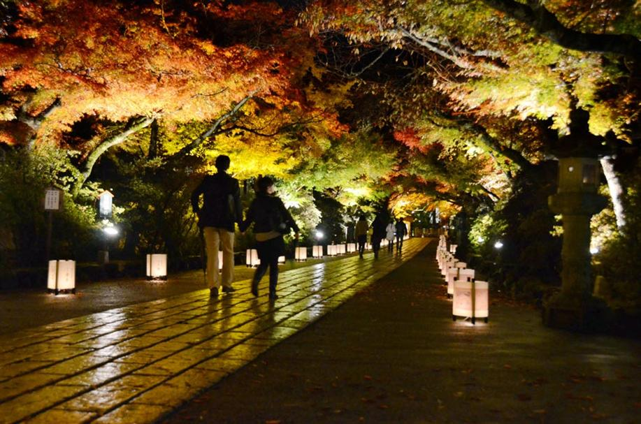 Ishiyama-dera on Light-up with autumnal leaves | 17th - 25th November, 2012 | Otsu-City, Shiga
