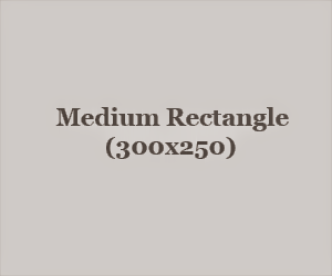 300x250 Ad Unit