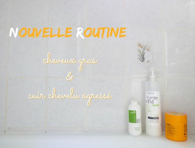 produits cheveux blog Plume de Blonde