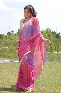 Priyamani Stills From Kshethram Movie CF 03.jpg?BollyM.Blogspot