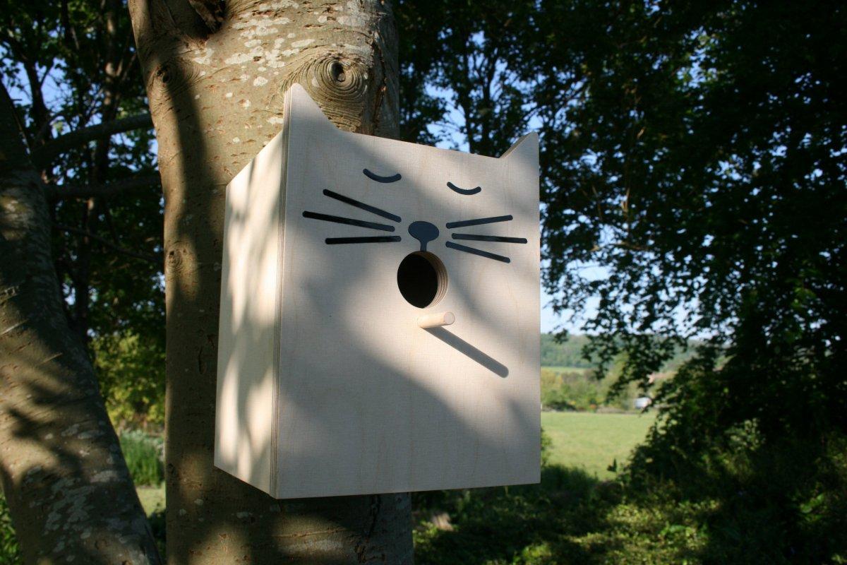 Sylvester Bird Box from ...