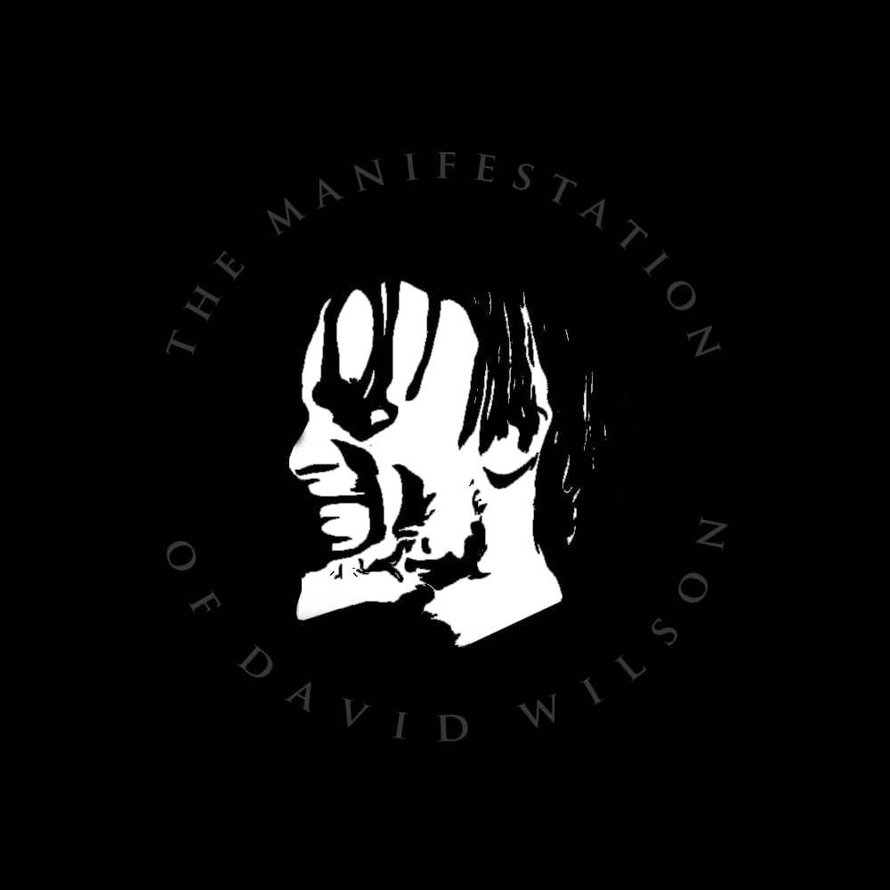 The Manifestation Of David Wilson