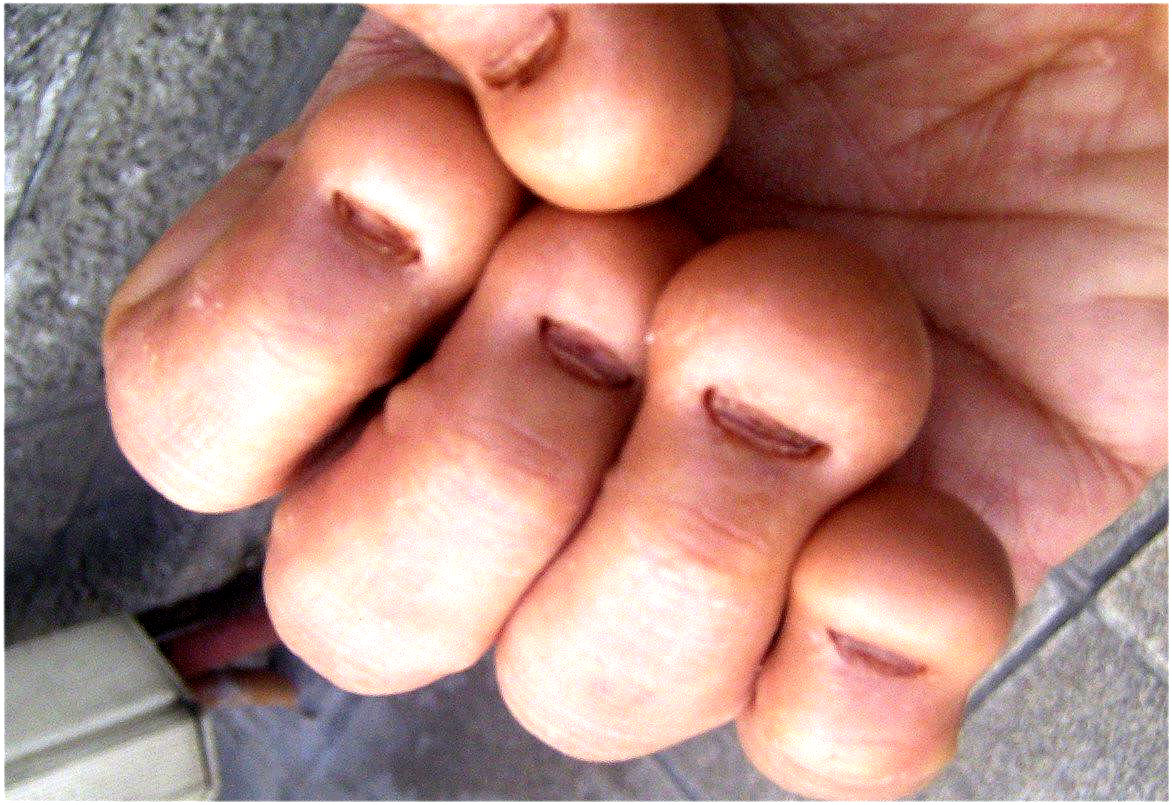 how to cut your nails male