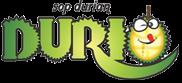 Franchise Sop Durian - Peluang Usaha Modal Kecil