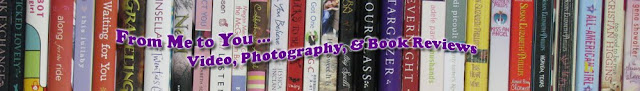 From Me to You Video, Photography and Book Reviews