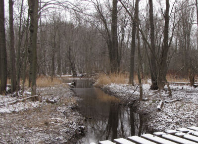 creek into Pere Marquette River
