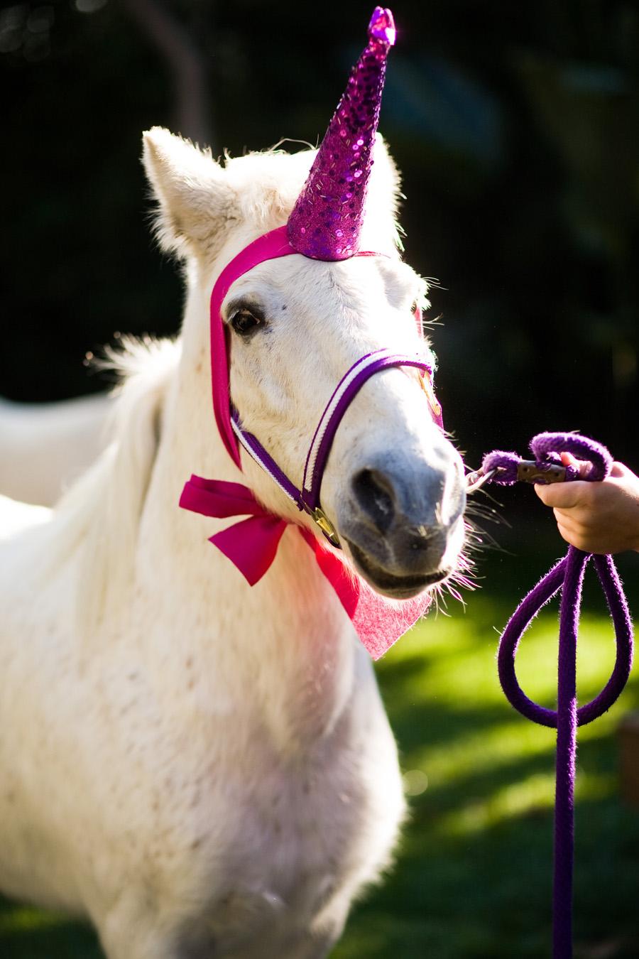 Maddycakes Muse: Unicorn Party Hats