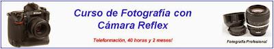 http://www.technicalcourses.net/portal/es/cursos/cursos_ficha.php?curso_id=20