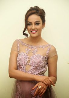 Actress Seerat Kapoor Pictures in Long Dress at Tiger Audio Launch 6.JPG