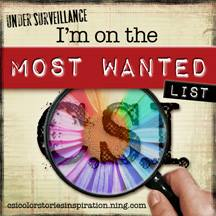 I have been chosen for the Most Wanted Award nine times