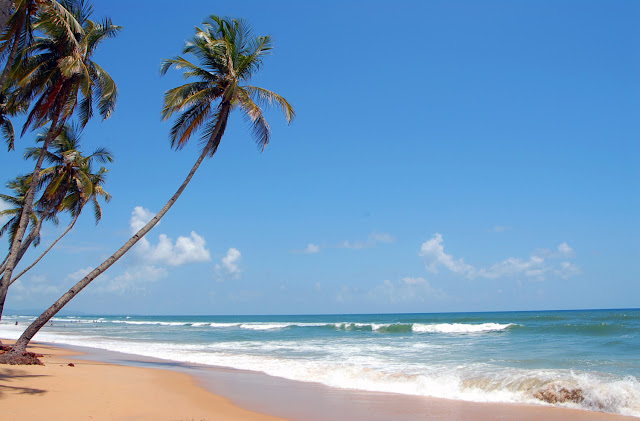 Goa: A Holiday to Remember image