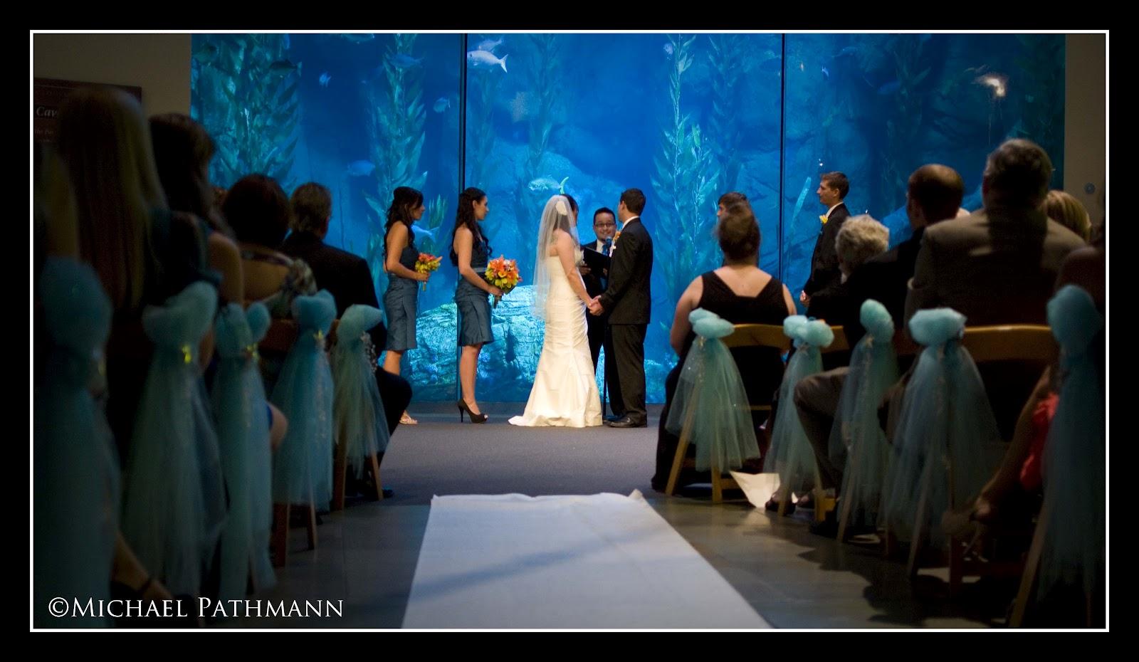 Pathmann Photography Long Beach Aquarium Wedding