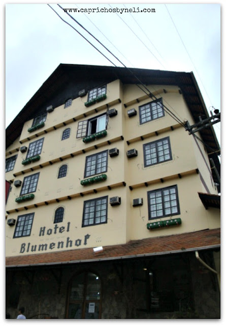 Vila germânica, Blumenau