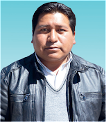Ing. Francisco Mamani Paredez