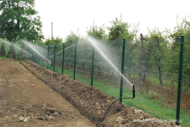 zakladanie automatycznego systemu nawadniajacego ogrody