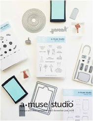 Click to view a PDF of the 2016 Amuse Studio Main catalog