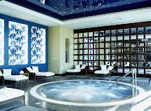 Luxury Jacuzzi Hot Tub Spa Designs