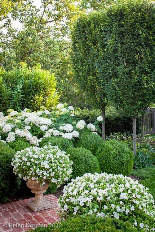 NINE SIXTEEN Patio Garden Inspiration White Green