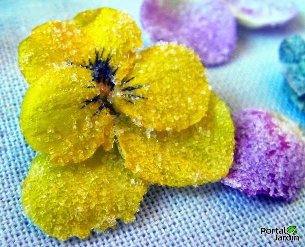 Del florero al plato: Las flores tambi�n se comen