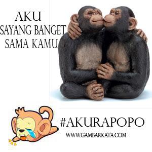 Aku sayang kamu - Aku Rapopo