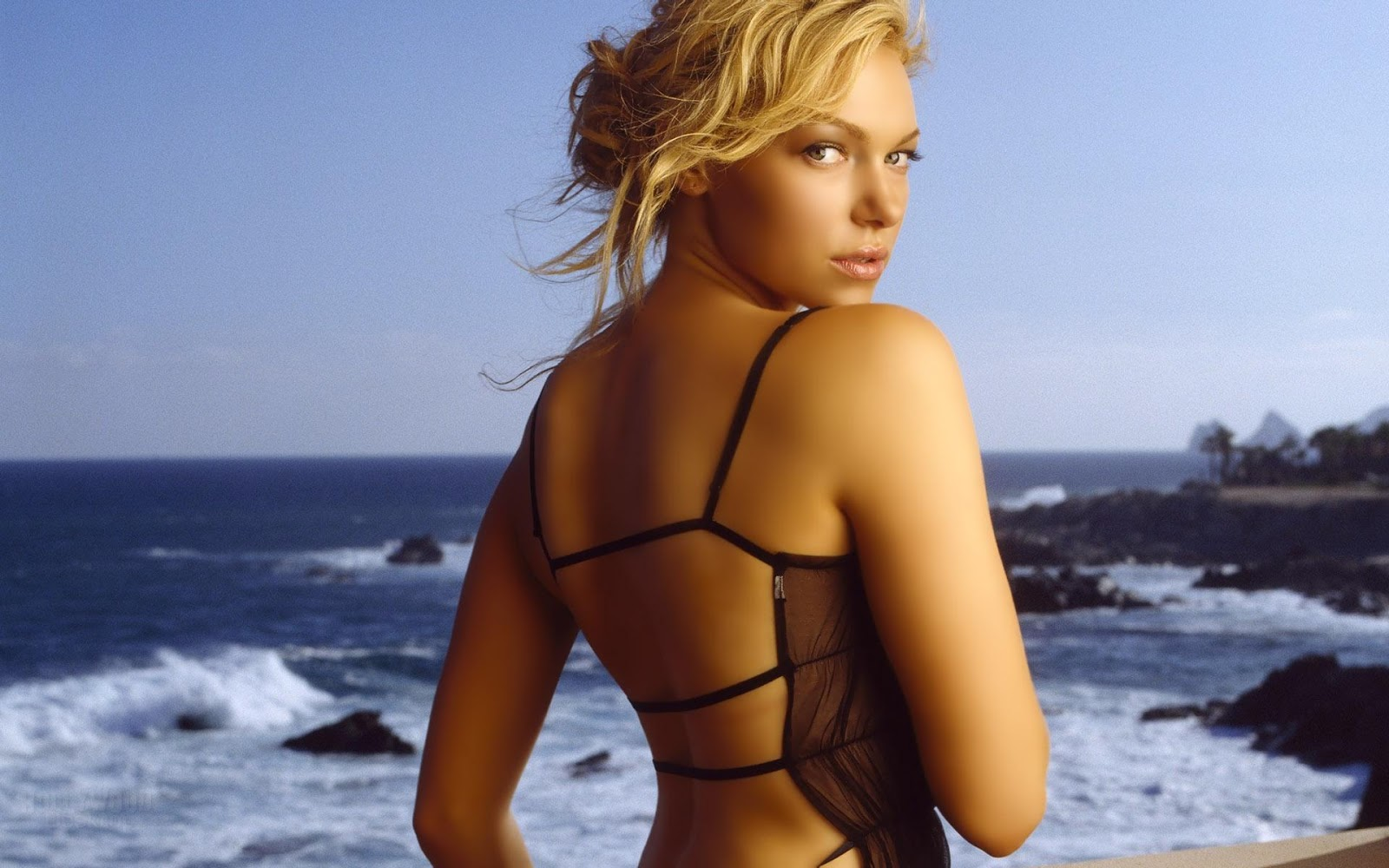 Katherine Heigl HD Wallpapers Free Download