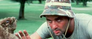 Bill Murray Caddyshack movieloversreviews.blogspot.com