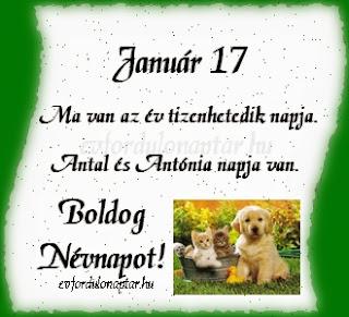 Január 17, Antal, Antónia névnap