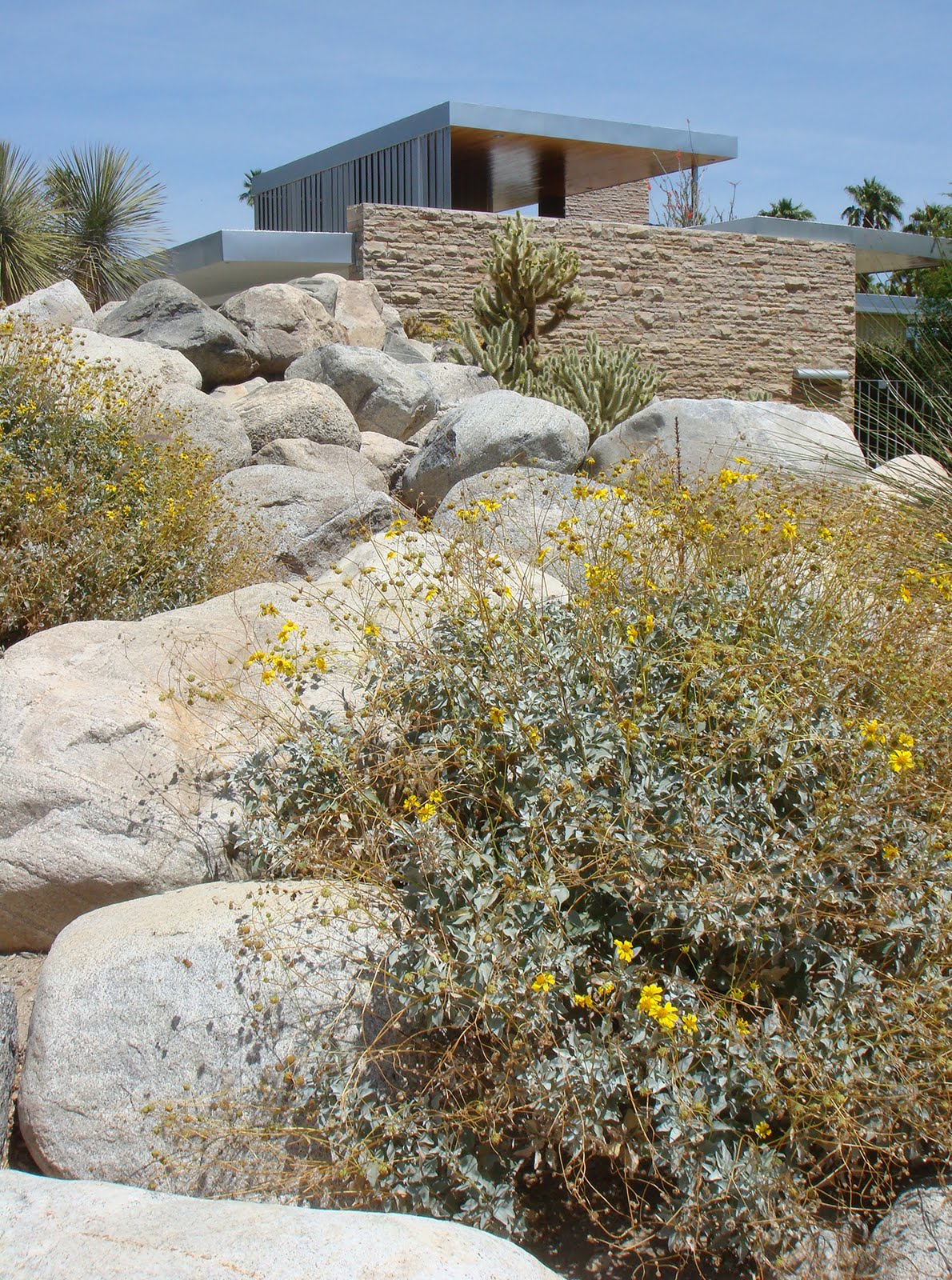 Richard neutra kaufmann desert house in palm springs for Desert landscape