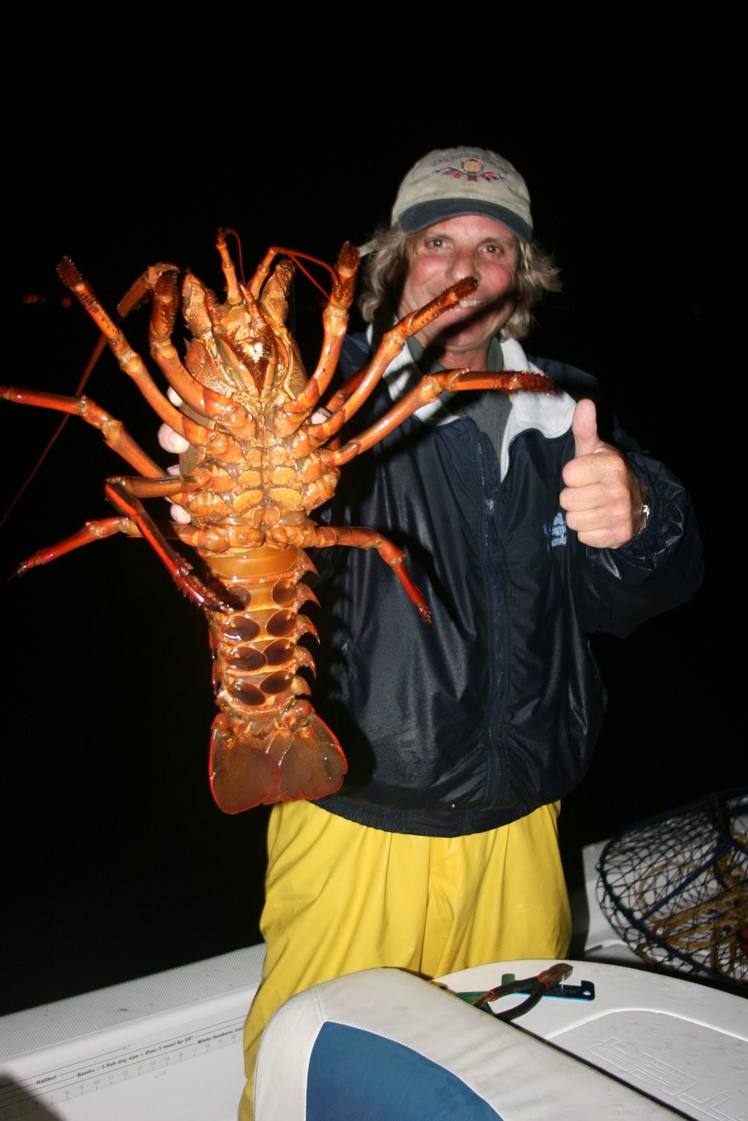 Dan 39 S Journal Lobster Fishing Last Night