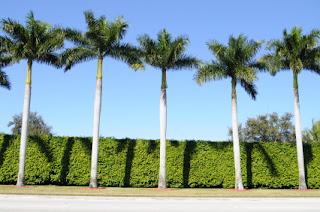 West Palm Beach RV dealers