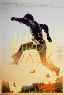 These Birds Walk movie contest Detroit